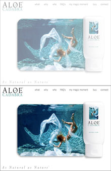 Thumbnail image of Aloe Cadabra website project