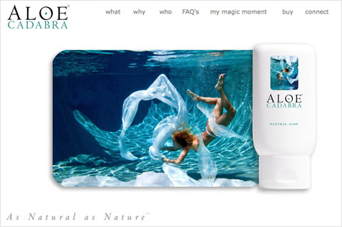 Image of Aloe Cadabra website project by Dennison+Wolfe